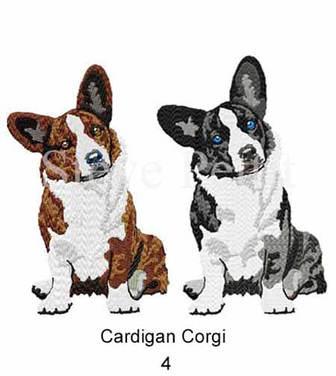 cardi-4watermarked.jpg