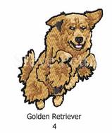 golden-4watermarked.jpg