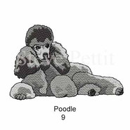 poodle-9watermarked.jpg