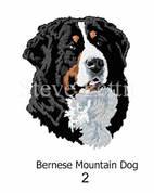 bernese-mountain-dog-2watermarked.jpg