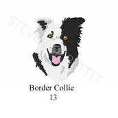 border-collie-13.jpg