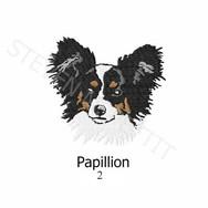 papillion-2.jpg