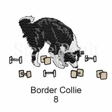 border-collie-8watermarked.jpg