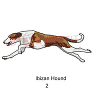 Ibizan-2.jpg