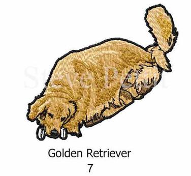 golden-7watermarked.jpg