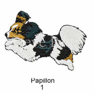 Papillon-1watermarked.jpg