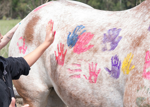 Child Painting a Horse.jpg