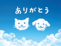 天国の犬と猫