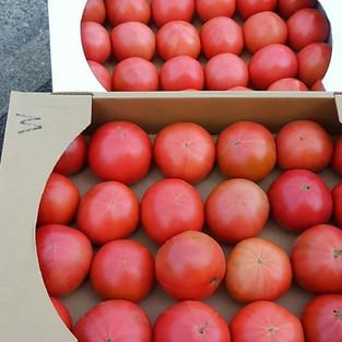 トマトの箱