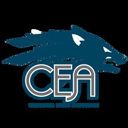 22368_carolinaeliteathletics_logo-01