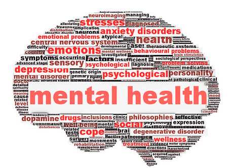The Mental Health Act and its Implementation in the Field