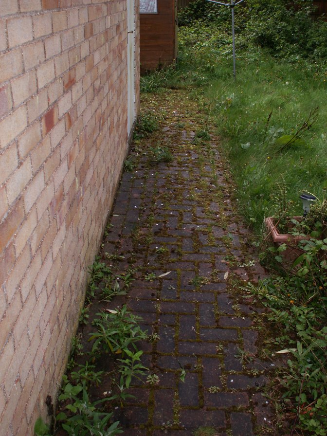 Brick paving before powerwash