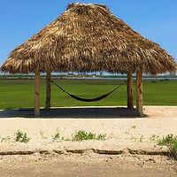 hammock palapa.jpg