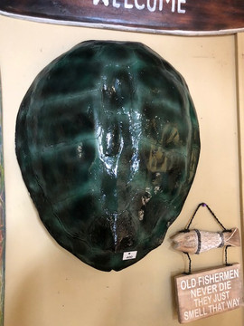 Faux Seaturtle Shell
