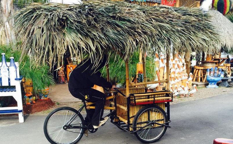 Palapa Bike