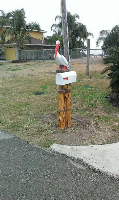 White Pelican and Mailbox