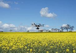 drone-flowers-orig.jpg