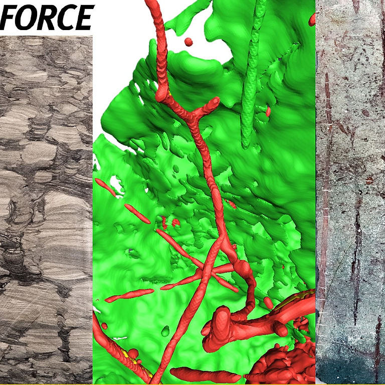 Force Seminar: Ichnology of Petroleum Systems