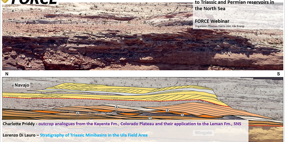 Force Webinar: Ephemeral fluvial systems – application to Triassic and Permian reservoirs in the North Sea