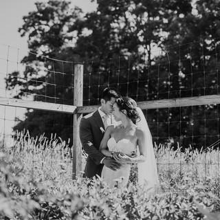 Jean _ Patrick wedding-485.jpg