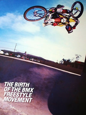 Wall to Wall BMX Freetyle Book