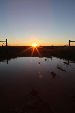 Sunrise. Carstairs, AB.jpg