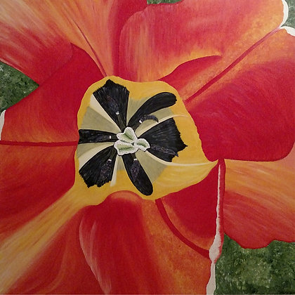 """Inner Tulip"""