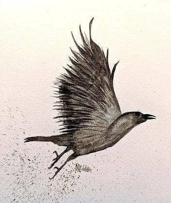 """In Flight"""