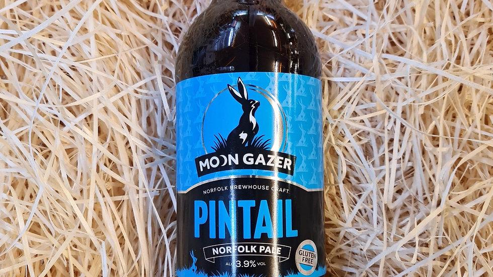 Moongazer Pintail Norfolk Pale