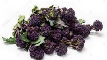 Broccoli - Purple
