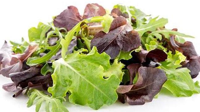 Lettuce - Baby Leaf Lettuce