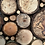 Thumbnail: Tree Rounds Wall Art