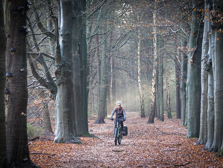 Winter bike trip Veluwe and Achterhoek