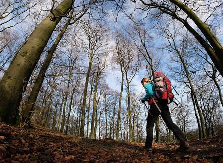 Hiking, Hermannshohen hike
