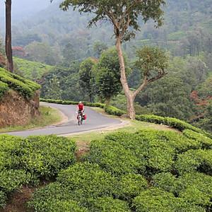 Tropisch Kerala Zuid India