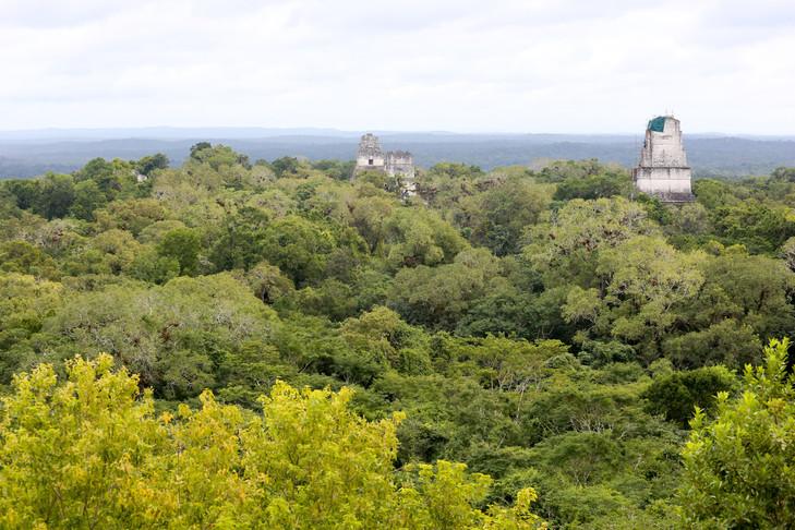 201502 Guatemala 153.jpg