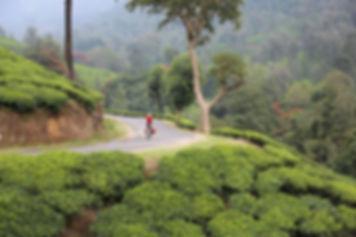 201310 IndiaKerala 125.jpg