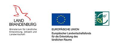Logos_BB-EU-LEAD - Kopie.jpg