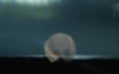 Screen Shot 2020-04-27 at 9.36.23 AM.png