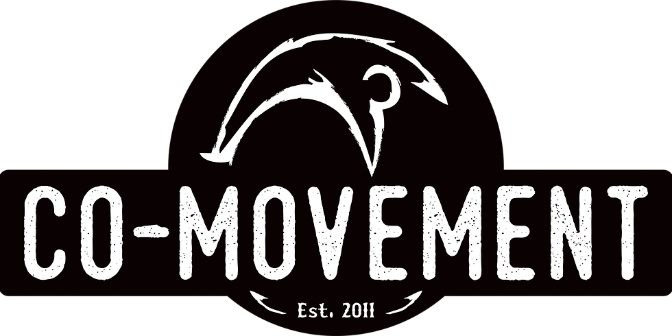 CO-MOVEMENT JOURNEY (1)