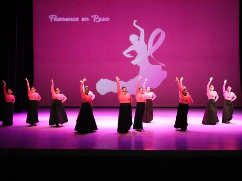 """En beneficio de quienes luchan contra el Cáncer de Mama, se realizó la presentación """"Flamenco en R"""