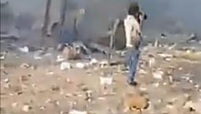 ((VIDEO)) Impactante video de personas sin vida tras explosión en Libano
