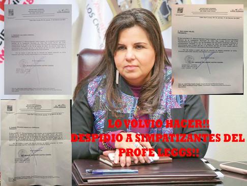 Armida Castro  despide a 5 empleados Municipales por apoyar al Profe Leggs.