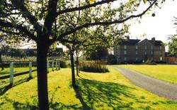Chateau avec arbres 2
