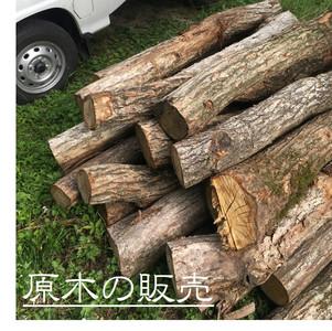 薪割りを自分で楽しみたい方必見、広葉樹原木!  商品名:広葉樹原木(ナラ、カシ等MIX、未乾燥) 原木長さ:1m~3m 販売価格:17,000円/t(税込) 販売単位:2t~  こんな方にお勧め:自分でチェンソーが使える、玉切りがしたい、薪割りがしたいという方。(長さを玉切り済みのものが欲しい方は、+3,000円/tで承ります。)  ※原木を2tダンプに積み込み、計量してから配送しますので基本的に配送までがセットでの販売になります。  ※原木販売の配送料については直接お問い合わせください。
