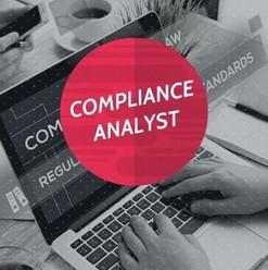 Compliance Analyst.jpg