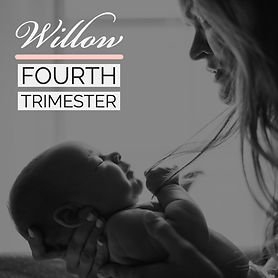 Willow Fourth Trimester