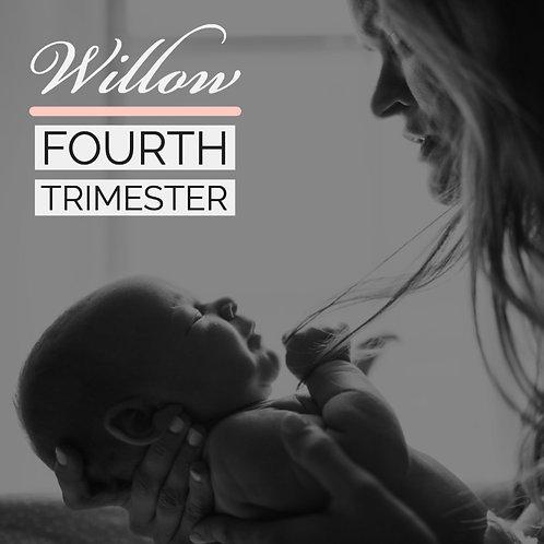 Fourth Trimester Programme