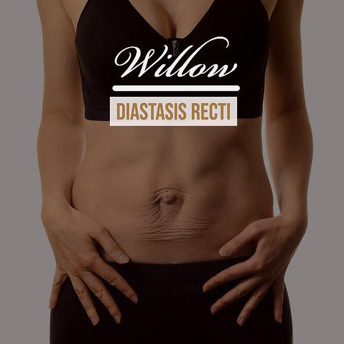 Diastasis Recti Programme