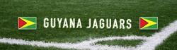 Guyana Web Banner